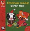 CHRISTMA'S COMMING. BIENTOT NOEL